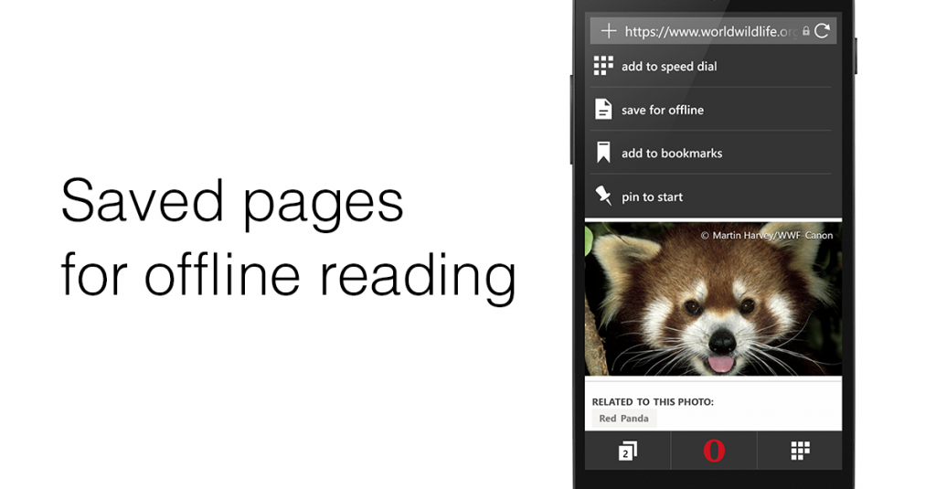 Opera Mini for Windows Phone 2